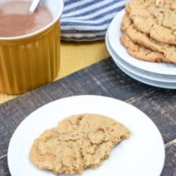 Chunky Peanut Butter Cookie